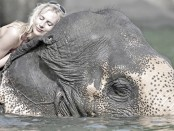 Elischeba schlafen auf Elefant