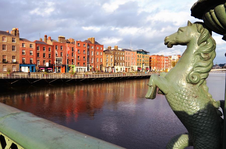 Pferd in Dublin