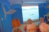 Delphine treffen auf der Insel Lo?inj in Kroatien
