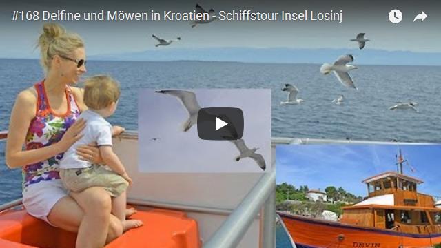 ElischebaTV_168_640x360 Delphine und Möwen in Kroatien