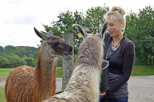 Elischeba mit Lama