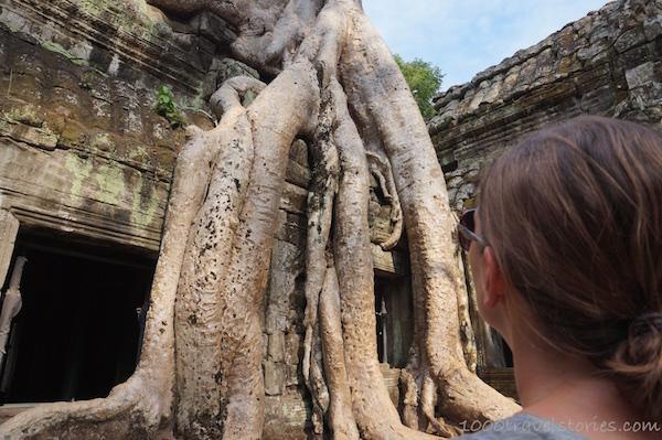 Angkor_TaProhm_Kambodscha