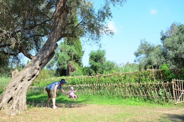 Garten mit Schaukel am Baum