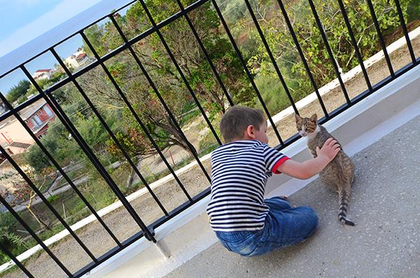 Korfu mit Katze