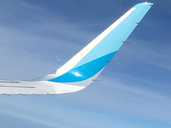 Airline überbucht