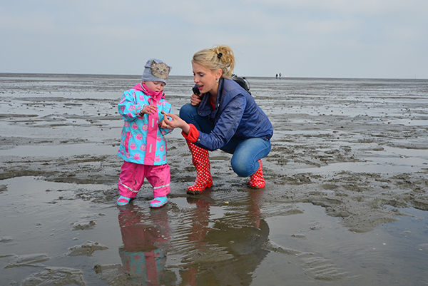 Wattwanderung Cuxhaven