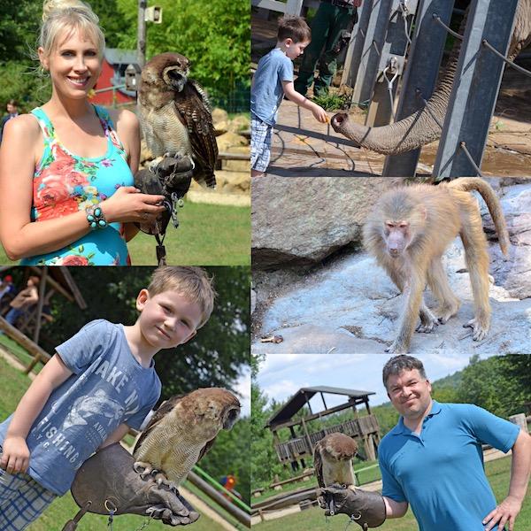 Zoo in Neunkirchen