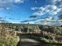 Vier Wochen in Schottland ? Reisetipps für Individualisten