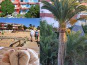 Besucher Fotos SBH Fuerteventura Playa