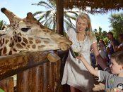 Giraffe im Oasis Park Elischeba Leon