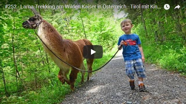 ElischebaTV_252_640x360 Lama-Trekking am Wilden Kaiser