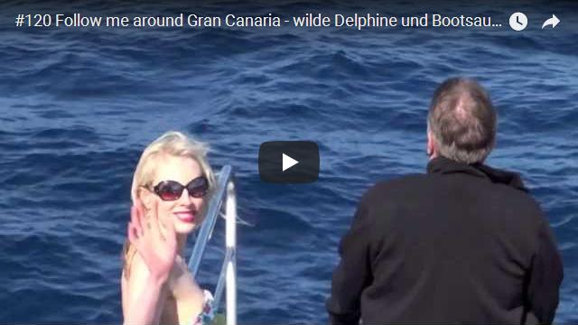 ElischebaTV_120_640x360 wilde Delphine vor Gran Canaria