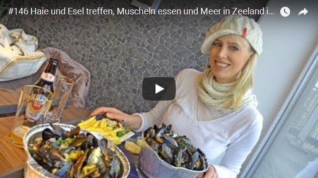 ElischebaTV_146_640x360 Muscheln essen in Zeeland