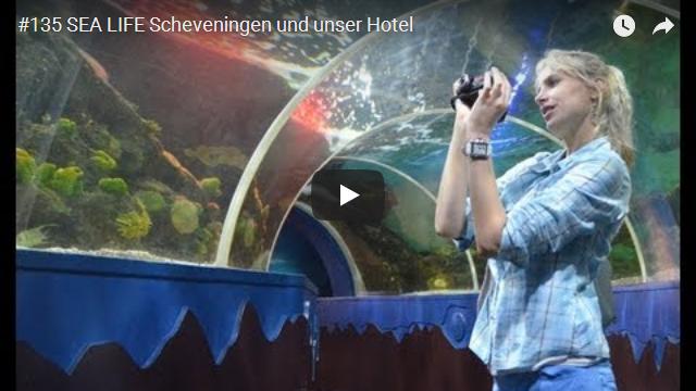 ElischebaTV_135_640x360 SEA LIVE Scheveningen
